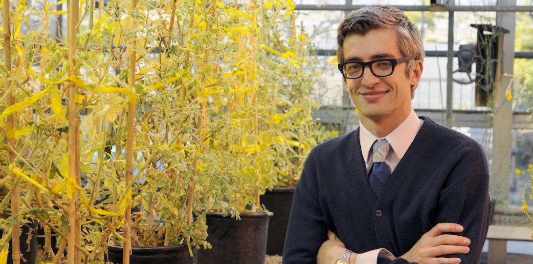 Boris Igic with his tomatoes